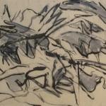 acanthus_Serie2-web