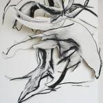 acanthus_Serie3_web