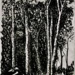 tekening in houtskool en grafiet